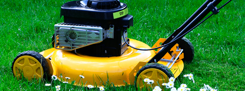 Lawn Mowers Buying Guides